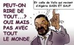 DESSIN DE PRESSE: Les quenelles de Dieudonné ne passent pas