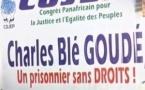 Côte d'Ivoire: Un chef de milice accusé de crimes contre l'humanité