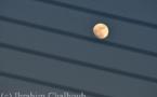 IMAGE DU JOUR – Lune électrique