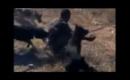 Papouasie-Nouvelle-Guinée: Vidéo choquante d'un homme attaqué par des chiens policiers