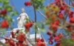 IMAGE DU JOUR – Mai et la Sainte Vierge
