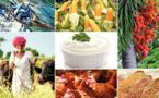 L'avenir des produits agricoles