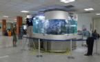 Rendez-vous à l'aéroport, devant l'aquarium!
