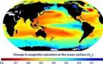 L'acidification des océans menace l'économie mondiale