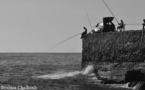 L'IMAGE DU JOUR: Pêcheurs