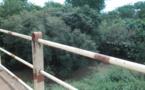 Bassin de la Mékrou: Une ressource qui se meurt