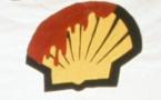 Nigeria: Le pétrole continue à empoisonner le Niger