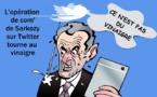 Gazouillis du printemps politique français
