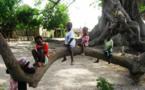 Vie associative: 10.000 moustiquaires pour Diouroup