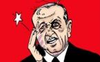 Erdogan voit des étoiles