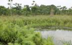 COP21: Collaboration franco-béninoise pour lutter contre les ravages des inondations dans le bassin du Zou