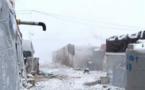Liban: renvoi forcé de plus de 100 réfugiés vers la Syrie