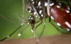 Comment se protéger de Zika?
