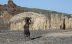 Sécheresse et famine en Éthiopie: les conséquences d'El Niño