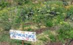 Permaculture, deuxième partie: dogme ou science?