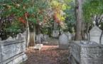 Renouer avec la mort, un enjeu capital