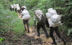 RDC: Des ex-enfants soldats se construisent une vie loin de la kalachnikov - 4