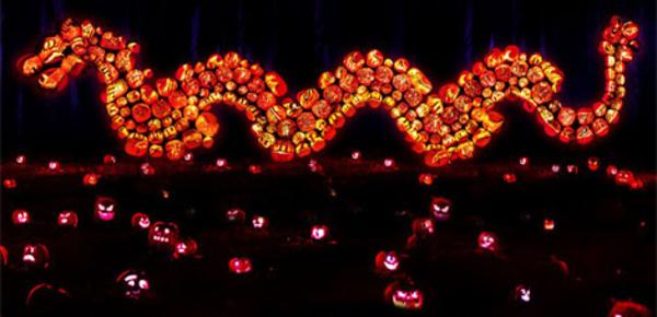Rise of the Jack O'Lanterns: plongée au cœur d'un festival féerique pour Halloween