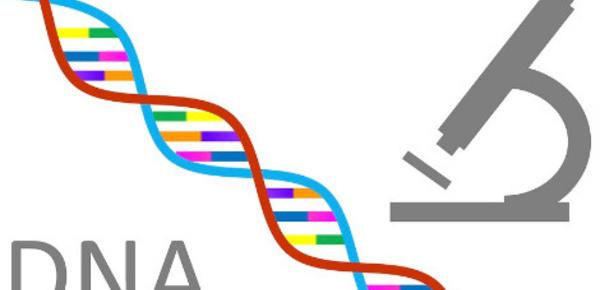 Fichage ADN: Le rétropédalage de l'Émir du Koweït