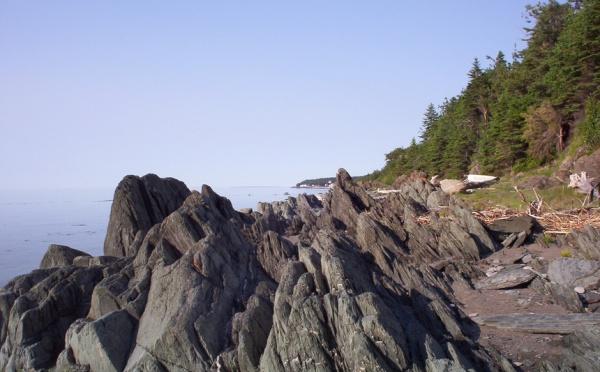 Le Québec et Monaco collaborent pour la protection de l'environnement