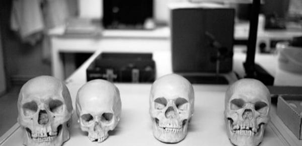 Archéologie forensique: de la fiction au réel