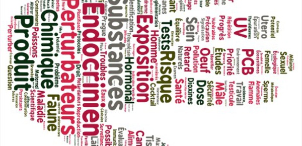 Les perturbateurs endocriniens, un enjeu et des dangers sanitaires majeurs