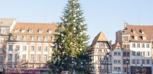 Strasbourg: le sapin de Noël est arrivé!