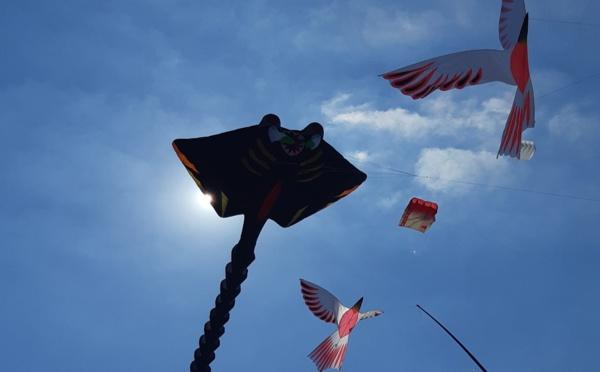 Berck-sur-Mer: 33e Rencontres Internationales de Cerfs-Volants