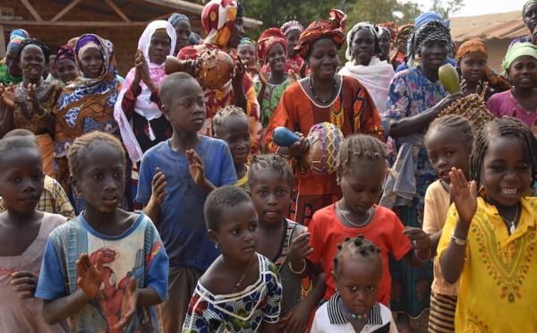 Côte d'Ivoire : l'insetting, stratégie d'avenir du développement durable ?