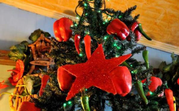 L'IMAGE DU JOUR: Piments de Noël