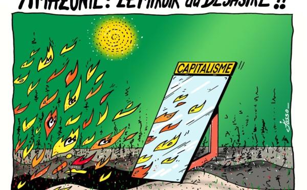 Incendie en Amazonie