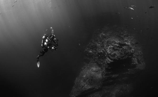 Laurent Ballesta et sa passion pour la mer Méditérranée