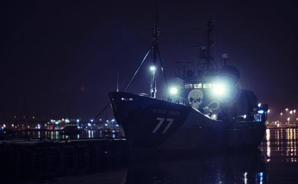 Sea Shepherd agit après le refus de la protection du requin mako