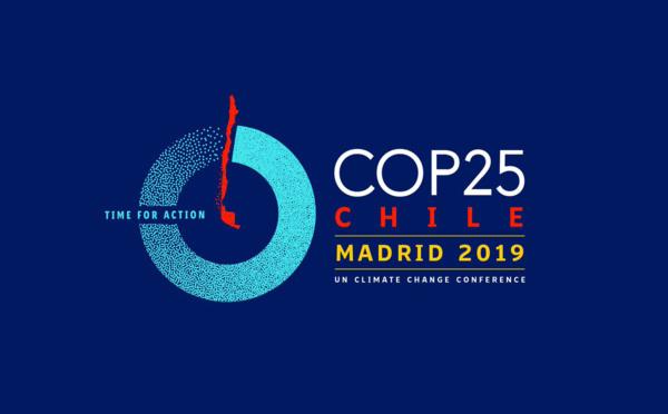 La COP 25 déçoit