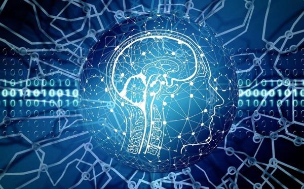 Une intelligence artificielle low-cost