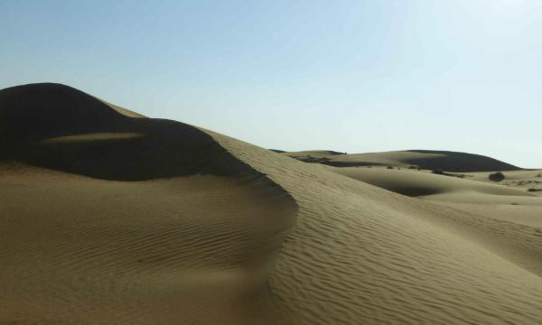 IMAGE DU JOUR: Le désert de Wahiba